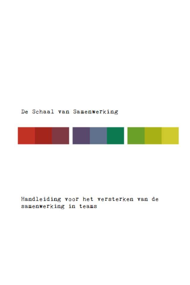 publicatie schaal van Samenwerking Pieter Schoe LCT Human Capital